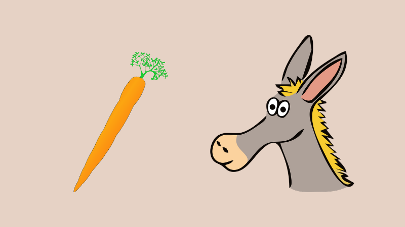 donkey with a carrot